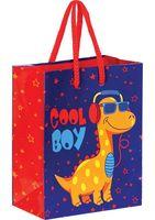 """Пакет бумажный подарочный """"Cool Boy"""" (14х11х6,5 см)"""