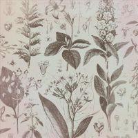 """Бумага для скрапбукинга """"Флора и фауна. Ботаника"""" (310х310 мм; 12 листов)"""