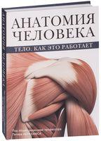 Анатомия человека. Тело. Как это работает