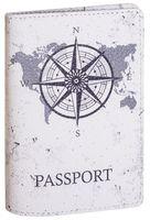 Обложка на паспорт (арт. C1-17-900)