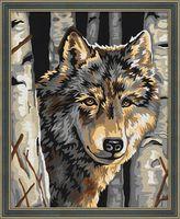 "Картина по номерам ""Волчий портрет"" (400х500 мм)"