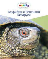 Амфибии и рептилии Беларуси