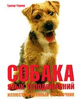 Собака. Язык телодвижений