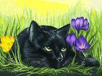 """Картина по номерам """"Кот и крокусы"""" (300х400 мм)"""
