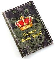 Обложка на паспорт (арт. C1-17-579)