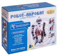 """Набор для опытов """"Робот-акробат"""""""
