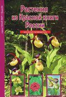 Растения из Красной книги России