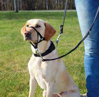 """Шлея тренировочная для собак """"Top Trainer Training Harness"""" (размер M, 40-48 см, черный, арт. 13003)"""