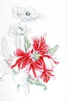 """Вышивка крестом """"Красные тюльпаны"""" (235х345 мм)"""