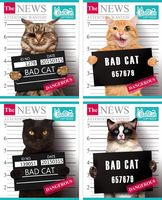 """Тетрадь в клетку """"Bad Cat"""" 48 листов"""