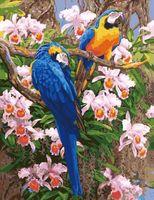"Картина по номерам ""Попугаи"" (400х500 мм)"