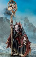 """Миниатюра """"Warhammer FB. Vampire Counts Necromacer"""" (91-34)"""