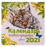 """Календарь настенный перекидной на 2021 год """"Календарь живой природы"""" (29х29 см)"""