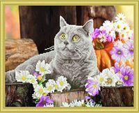 """Алмазная вышивка-мозаика """"Британский кот"""" (400х500 мм)"""