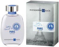 """Туалетная вода для мужчин """"Let's Travel To Paris For Man"""" (100 мл)"""