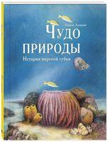 Чудо природы. История морской губки