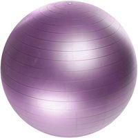 Мяч гимнастический (55 см; арт. 0000003088)