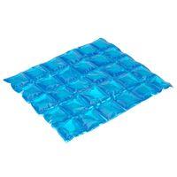 Хладоэлемент пластмассовый (24,5х14 см; 300 г; арт. C13600120)