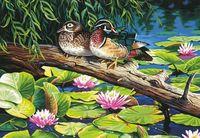 "Картина по номерам ""Пруд с лилиями"" (360х510 мм; арт.91467-73-DMS)"