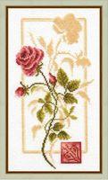 """Вышивка крестом """"Отражение розы"""""""
