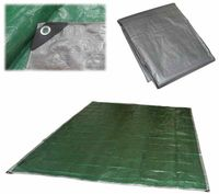 Тент T-5х6 (5х6 м; серебристо-зелёный)