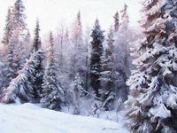 """Картина по номерам """"Сибирские морозы"""" (400х500 мм)"""