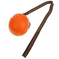 """Игрушка для собак """"Мяч с лентой"""" (10 см)"""