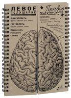 """Блокнот """"Мозги. Равные полушария"""""""