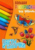 Цветы и бабочки. Раскраска