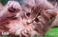 """Календарь квартальный на 2017 год """"Домашние любимцы. Пушистый котенок"""""""