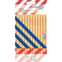 Набор карандашей чернографитных (12 шт.; 2B-2H)