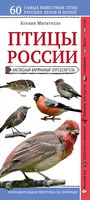 Птицы России. Наглядный карманный определитель