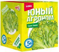 """Набор для выращивания растений """"Салат Задор"""""""
