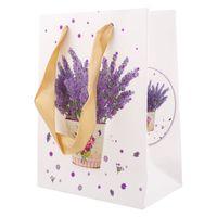 """Пакет бумажный подарочный """"Darvish"""" (12х16х6,5 см; арт. DV-7670)"""
