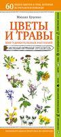 Цветы и травы. Мир удивительных растений