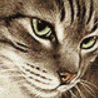 "Алмазная вышивка-мозаика ""Загадочный кот"" (200х200 мм)"