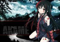 "Постер ""Akame ga Kill!"" (арт. 89)"