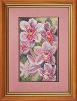 """Вышивка крестом """"Любимые орхидеи"""""""