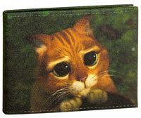 """Обложка для зачетной книжки """"Котик"""""""