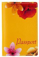 Обложка на паспорт (арт. C1-17-895)