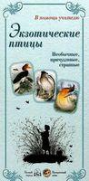Экзотические птицы. Необычные, причудливые, странные