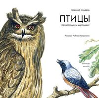 Птицы. Орнитология в картинках