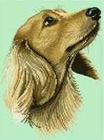 """Канва с нанесенным рисунком """"Собака"""" (арт. А-1488)"""