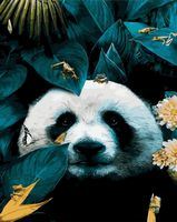 "Картина по номерам ""Очаровательная панда"" (400х500 мм)"