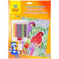 """Раскраска по номерам """"Попугаи"""" (с цветными карандашами)"""