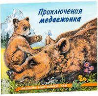 Приключения медвежонка