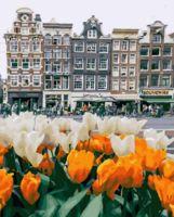 "Картина по номерам ""Амстердам в цветах"" (400х500 мм)"