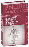 Анатомия человека в таблицах и схемах