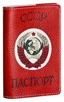 Обложка на паспорт (арт. C1-17-275)