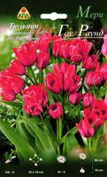 """Тюльпан триумф многоцветковый """"Мери Гоу Раунд"""""""